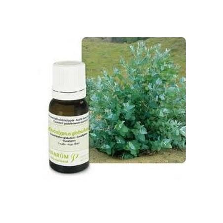 Eucalyptus globuleux bio Huile essentielle 10ml - Aromathérapie Pranarom