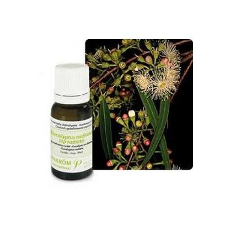 Eucalyptus radié bio Huile essentielle 10ml - Aromathérapie Pranarom