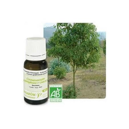 Ravintsara bio Huile essentielle 10ml - Aromathérapie Pranarom