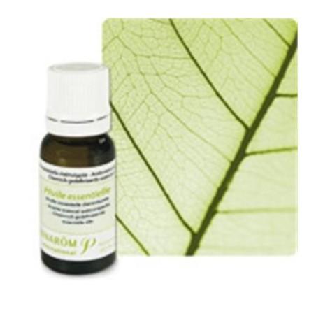 Vétiver Huile essentielle 5ml - Aromathérapie Pranarom