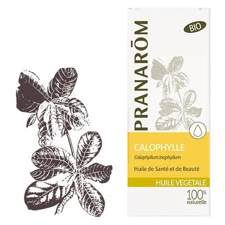 Aceite vegetal Calophylle Bio 50ml - Aromaterapia Pranarom